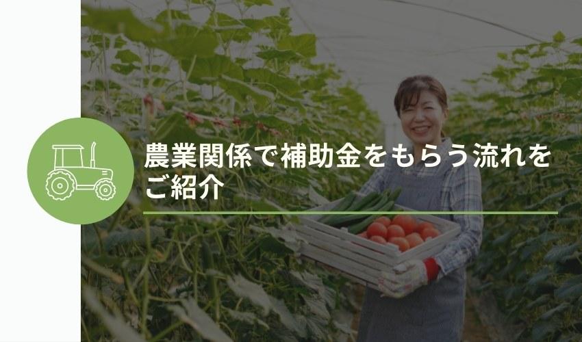 農業関係で補助金をもらう流れをご紹介