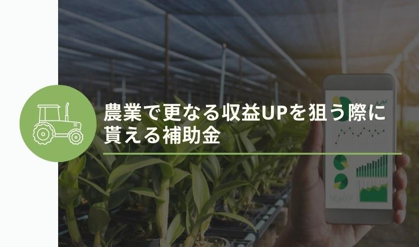 農業で更なる収益UPを狙う際に貰える補助金